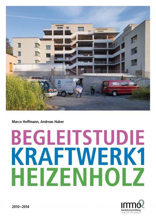 Begleitstudie Kraftwerk1 Heizenholz