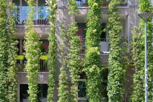 Forum Klimaangepasste Stadtentwicklung